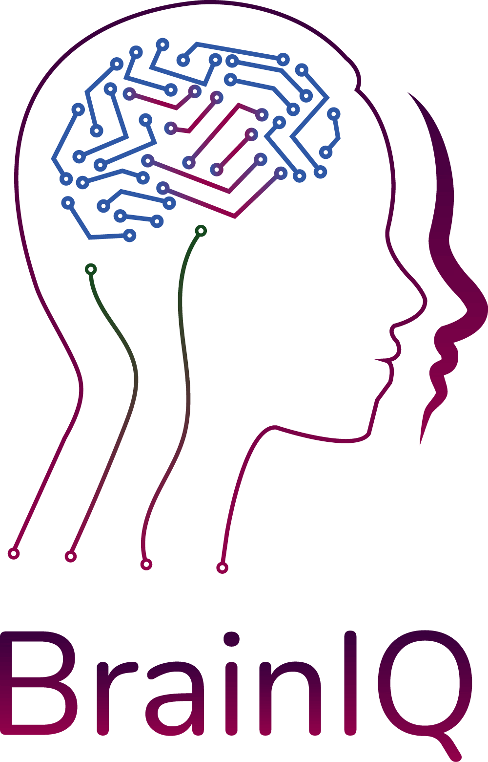 BrainIQ - Szkolenia, coaching - Barbara Grześ